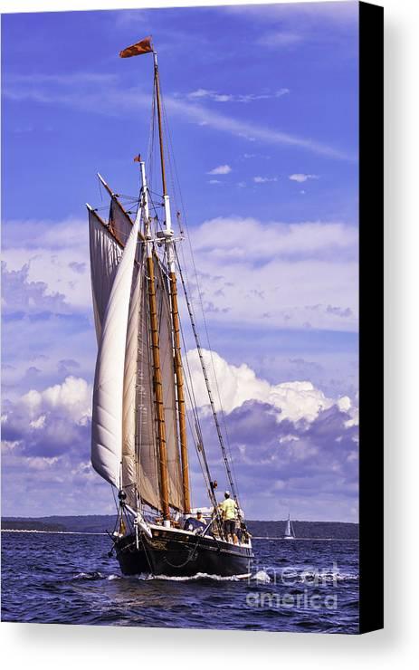 Amistad Canvas Print featuring the photograph Sailor's Serenity by Joe Geraci