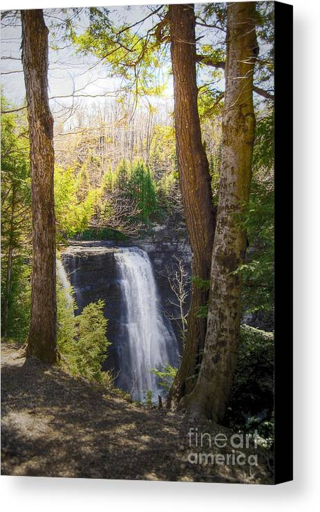 Waterfalls Landscape Canvas Print featuring the photograph Salmon River Falls by Pat Carosone