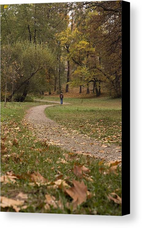 Autumn Canvas Print featuring the photograph Silence by Mihail Antonio Andrei