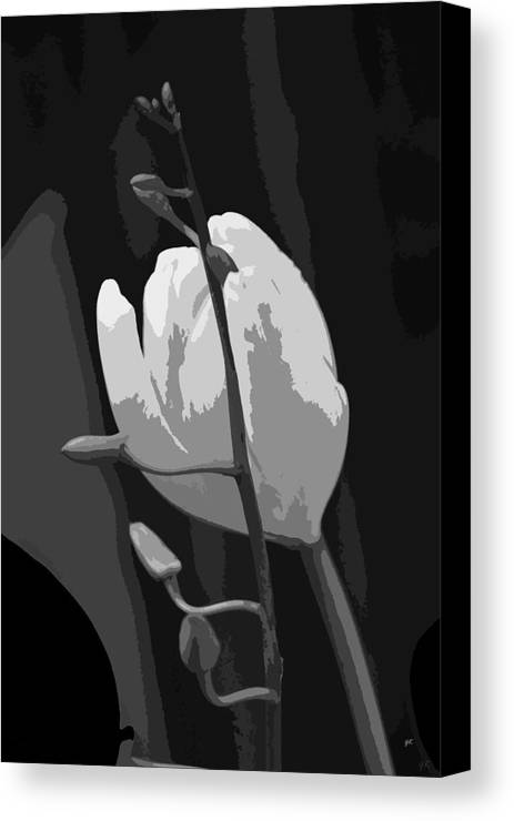 Abstract Digital Art Canvas Print featuring the photograph Simplicity by Gerlinde Keating - Galleria GK Keating Associates Inc