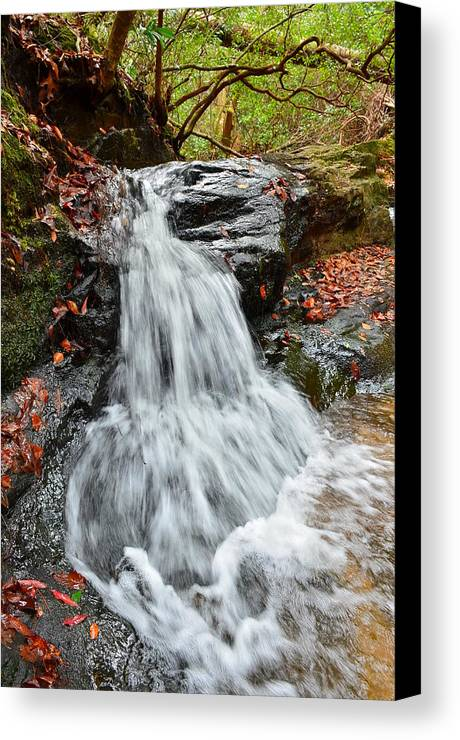 Canvas Print featuring the photograph Slippery Rock Falls Fdr State Park Ga by Mountains to the Sea Photo