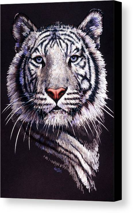 Tiger Canvas Print featuring the drawing Sorcerer by Barbara Keith