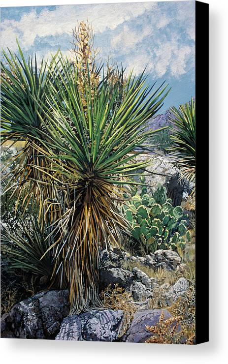 Desert Landscape Canvas Print featuring the painting Southwest Foothills by Randy Patton