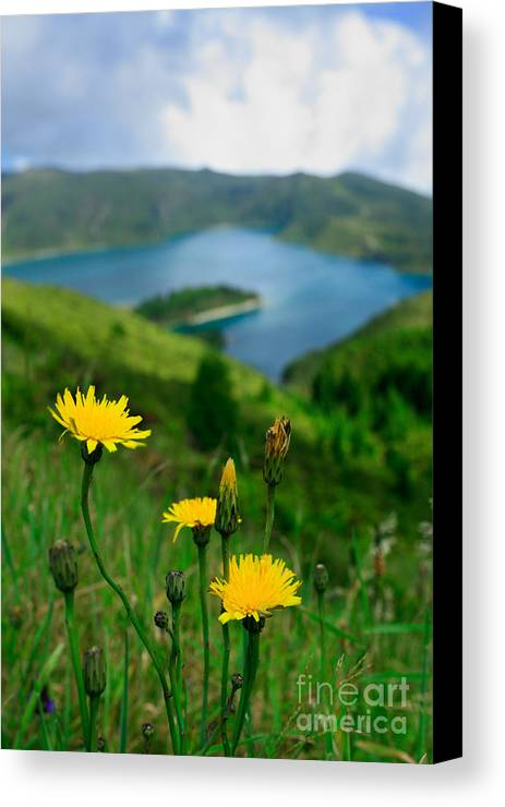 Caldera Canvas Print featuring the photograph Springtime In Fogo Crater by Gaspar Avila