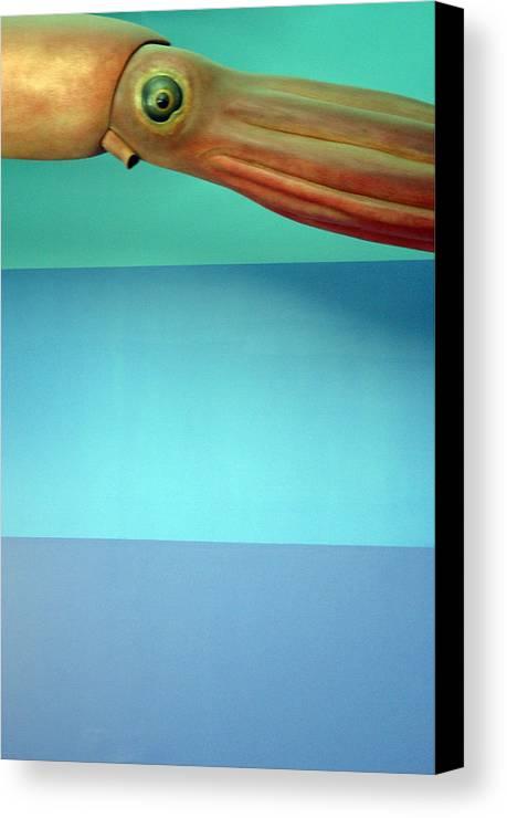 Jez C Self Canvas Print featuring the photograph Squidoolie by Jez C Self