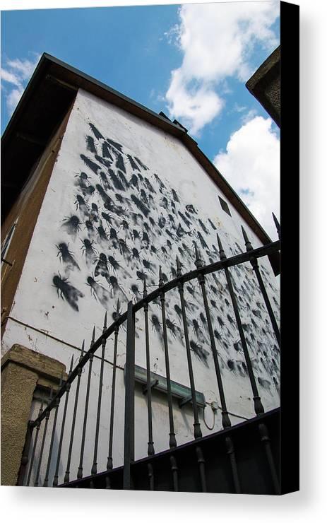 Campidoglio Canvas Print featuring the photograph Street Art At The Campidoglio Neighborhood - 5 by Riccardo Forte