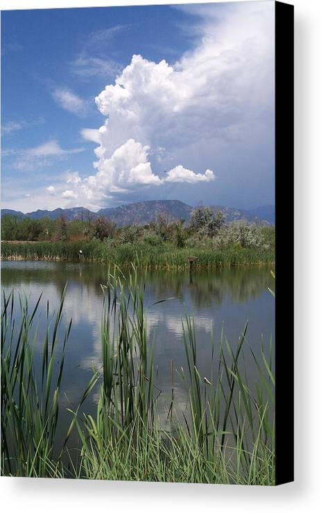 Landscape Canvas Print featuring the photograph summer Daze by Sarah Bauer