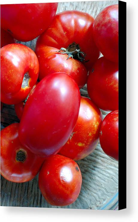 Photography Canvas Print featuring the photograph Summer Tomatoes by Heather S Huston