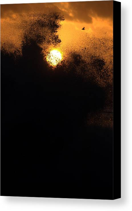 Sun Canvas Print featuring the photograph Sun Monster by Brad Scott