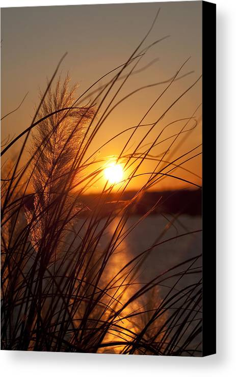 Sunset Canvas Print featuring the photograph Sunset Over Lake Wylie Sc by Dustin K Ryan