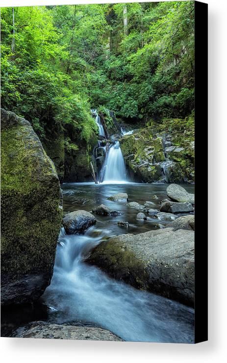 Sweet Creek Falls Canvas Print featuring the photograph Sweet Creek Falls Vertical by Belinda Greb