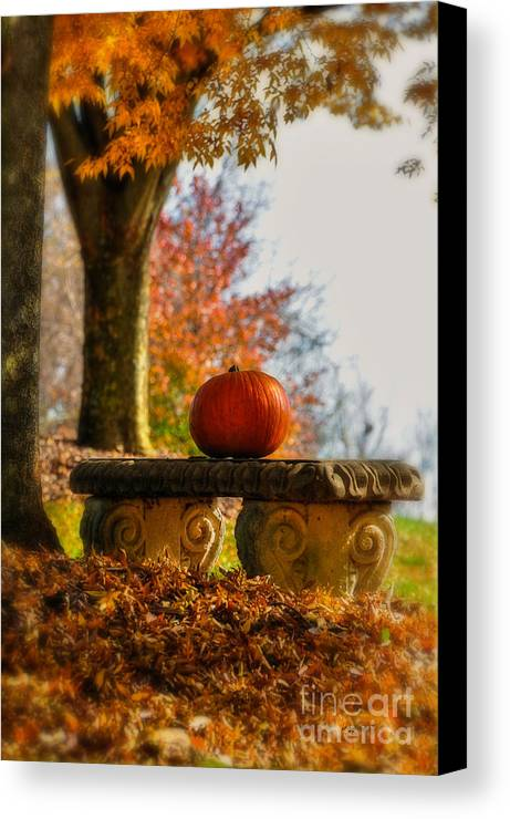 Pumpkin Canvas Print featuring the photograph The Last Pumpkin by Lois Bryan