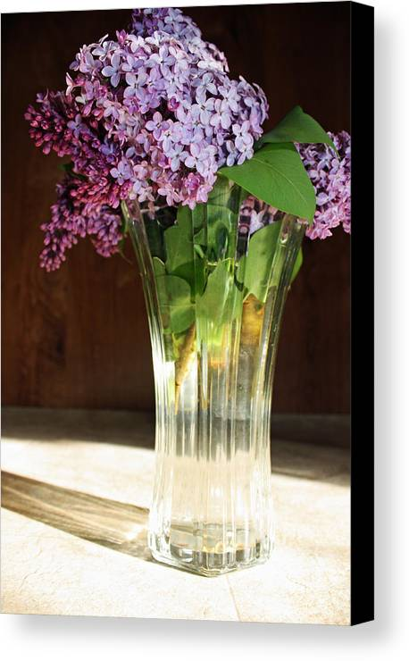 Flowers Canvas Print featuring the photograph The Vase by Becca Brann