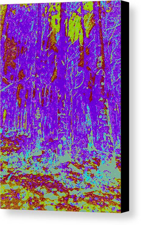 Canvas Print featuring the digital art Thin Trees D4 by Modified Image