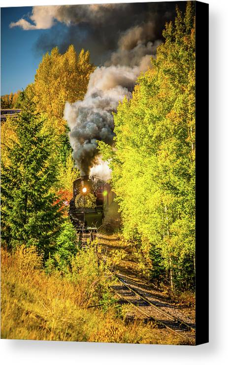 Cumbres & Toltec Railroad Canvas Print featuring the photograph Through The Trees by Tom Weisbrook