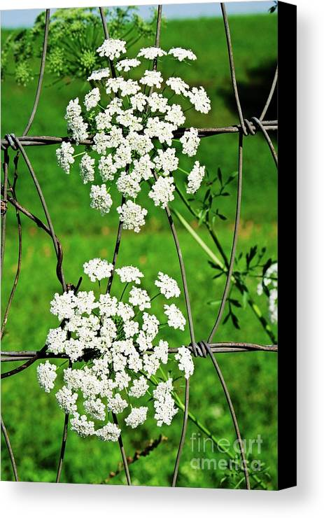 Nature Canvas Print featuring the photograph Two Of A Kind by Gary Richards