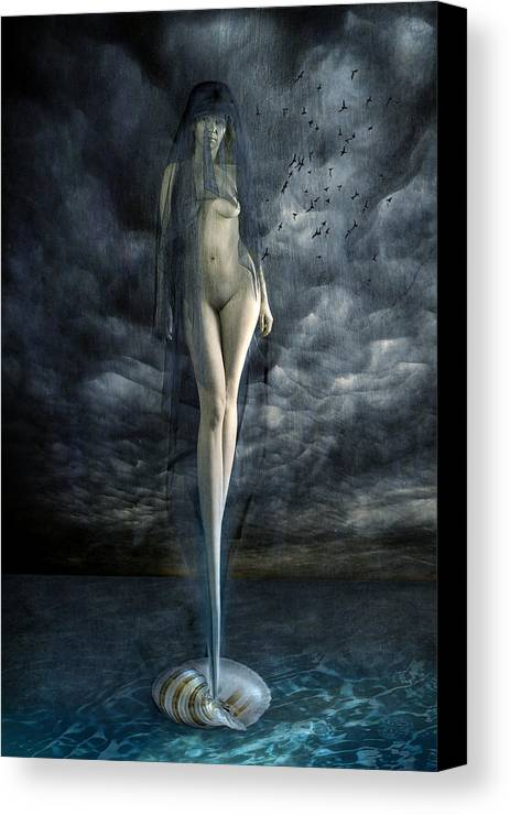 Canvas Print featuring the photograph Venus Noir by Zygmunt Kozimor