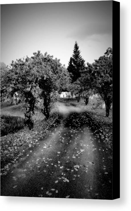 Cemetery Canvas Print featuring the photograph Vermont Cemetery by Michael Simeone