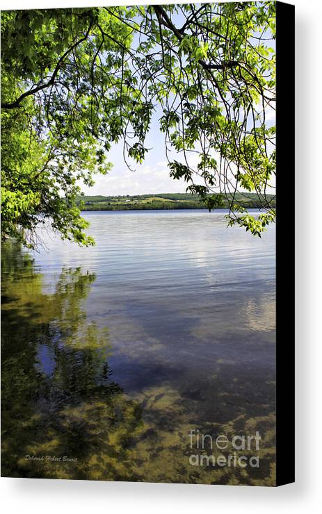 Vermont Canvas Print featuring the photograph View From Under At Lake Carmi by Deborah Benoit