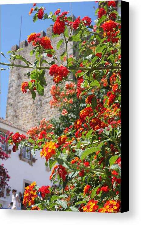 Village And Casttle Obidos Canvas Print featuring the photograph Village by Raquel Daniell