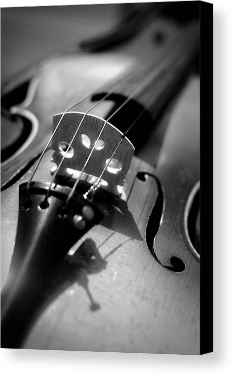Vertical Canvas Print featuring the photograph Violin by Danielle Donders - Mothership Photography