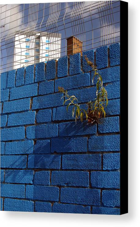 Jez C Self Canvas Print featuring the photograph Wall Of Life by Jez C Self