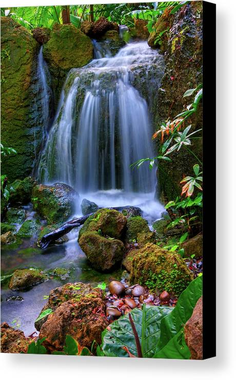 Vertical Canvas Print featuring the photograph Waterfall by Patti Sullivan Schmidt