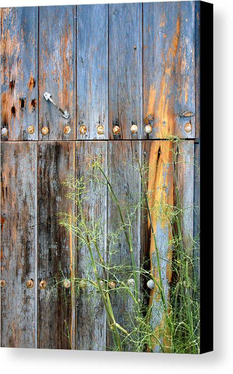 Photographer Canvas Print featuring the photograph Weathered by Jez C Self