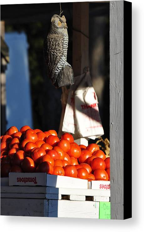 Still Life Canvas Print featuring the photograph Who's Tomatoes by Jan Amiss Photography