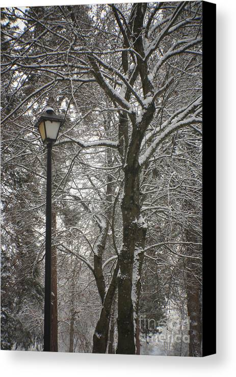 Lamp Canvas Print featuring the photograph Winter Lamp Post by Idaho Scenic Images Linda Lantzy