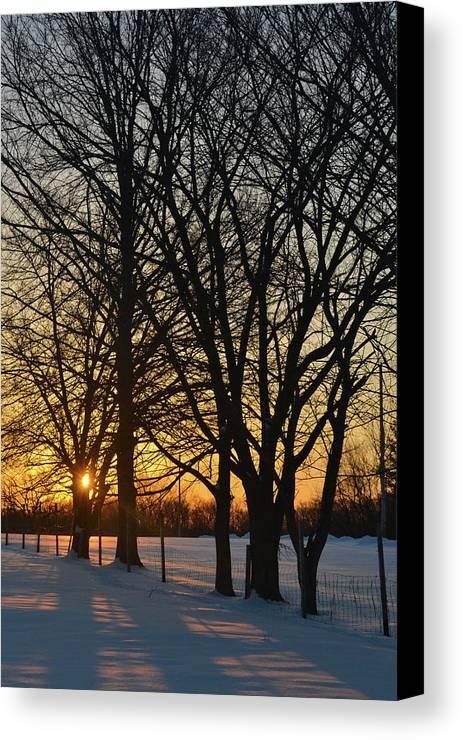 Sunrise Canvas Print featuring the photograph Winter Sunrise by Philip LeVee