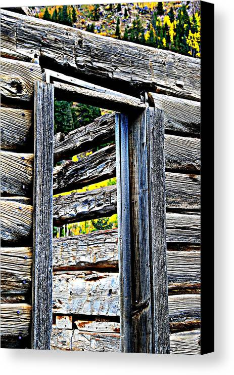 Colorado Canvas Print featuring the photograph Wood Grain by Bill Keiran