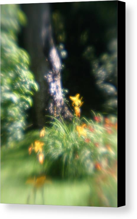 Canvas Print featuring the photograph Yellow Flowers In Monets Garden by Jennifer McDuffie