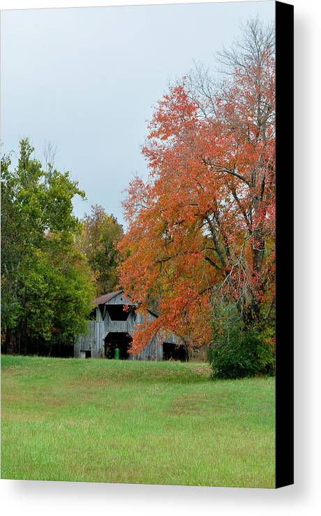 Landscapes Canvas Print featuring the photograph Yesterday by Jan Amiss Photography
