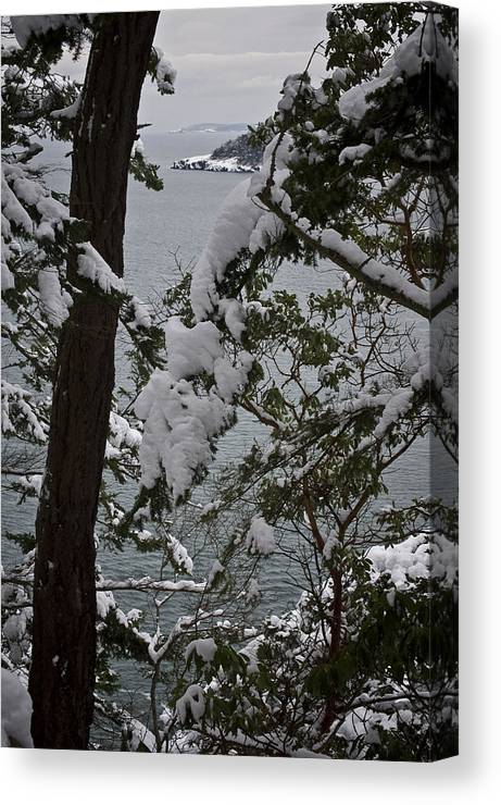 Deception Pass Canvas Print featuring the photograph December's Point by Tom Trimbath