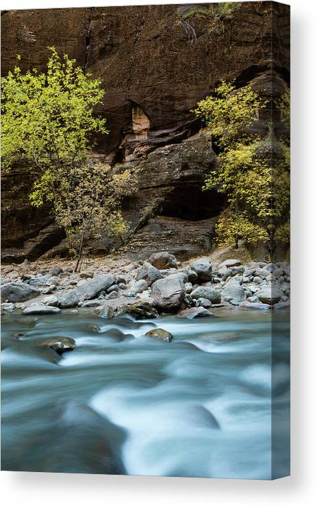 Photography Canvas Print featuring the photograph River Flowing Through Rocks, Zion by Panoramic Images