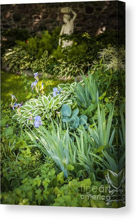 Garden Canvas Print featuring the photograph Shady Garden by Elena Elisseeva