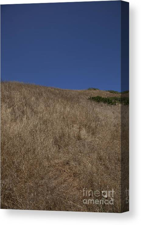 Simplicity Canvas Print featuring the photograph Simplicity by Amanda Barcon