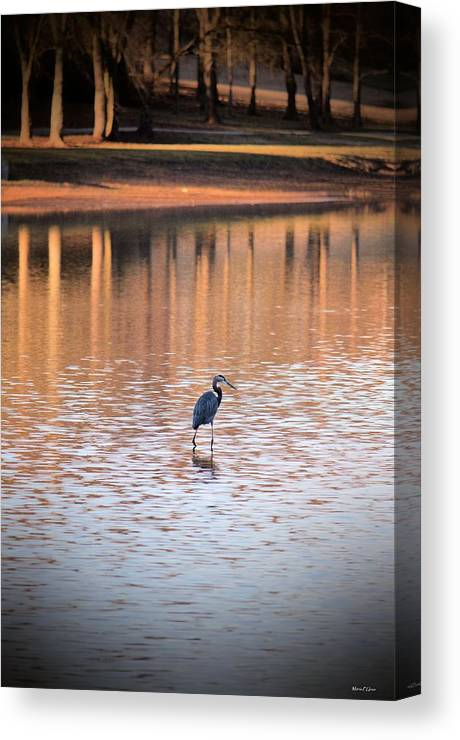 Sunset On The Lake Canvas Print featuring the photograph Sunset On The Lake by Maria Urso