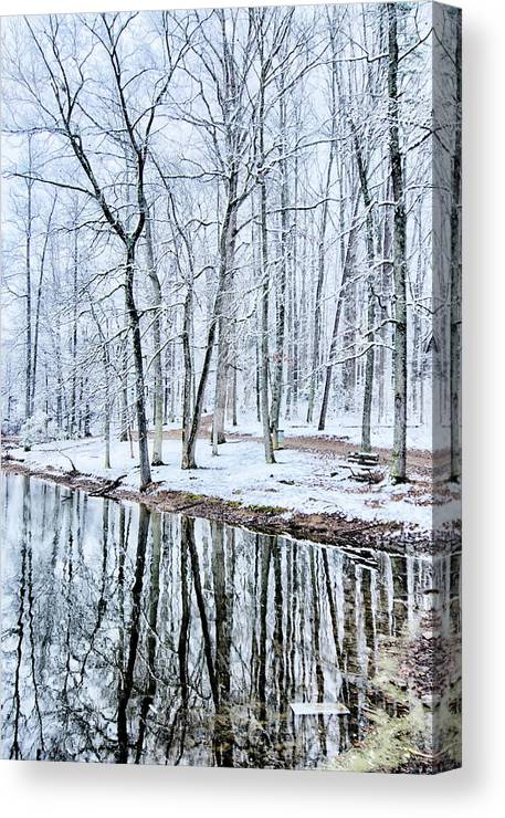 Tree Line Canvas Print featuring the photograph Tree Line Reflections In Lake During Winter Snow Storm by Alex Grichenko