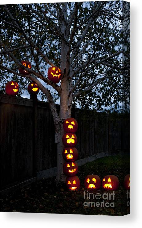 31st Canvas Print featuring the photograph Pumpkin Escape Over Fence by Jim Corwin