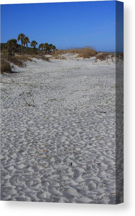 Hunting Island Canvas Print featuring the photograph Hunting Island by Mountains to the Sea Photo