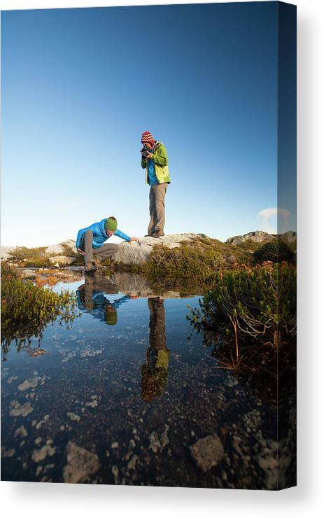 Alpine Canvas Print featuring the photograph A Young Woman Explores The Microclimate by Christopher Kimmel