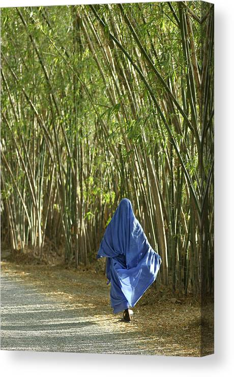 Africa Canvas Print featuring the photograph Bamboo by Christian Heeb