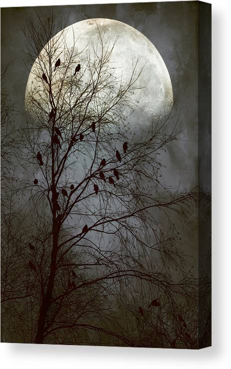 #birds Canvas Print featuring the photograph Black Birds Singing In The Dead Of Night by John Rivera