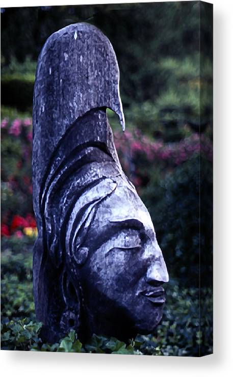 Still Life Canvas Print featuring the photograph Chief by Michael Fenton
