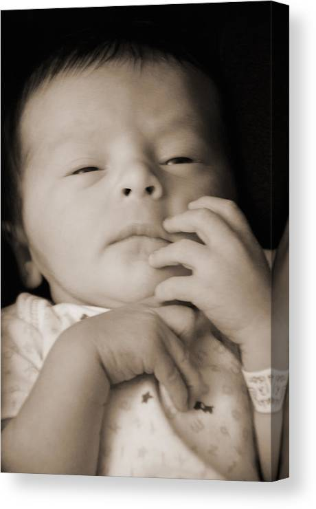 Thought Canvas Print featuring the photograph Contemplating by Sabrina Hall