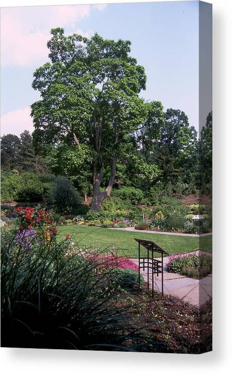 Cornell Plantations Canvas Print featuring the photograph Cornell Plantations 2 by Marianne Miles