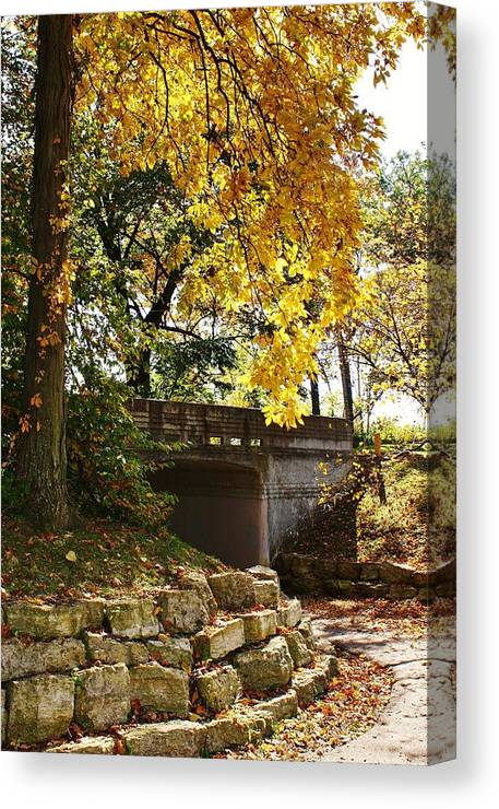 Park Canvas Print featuring the photograph Drive Through Sinnissippi Park by Bruce Bley