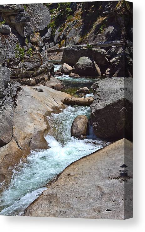 Stream Canvas Print featuring the photograph Fishing Stream by Brian Williamson
